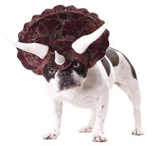 PET20104_Triceratops