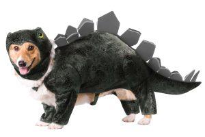 PET20105_Stegasaurous