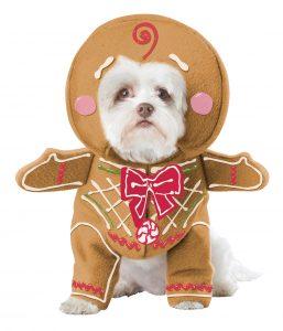 PET20133_GingerbreadPup