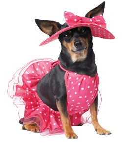 PET20142_PrettyinPink