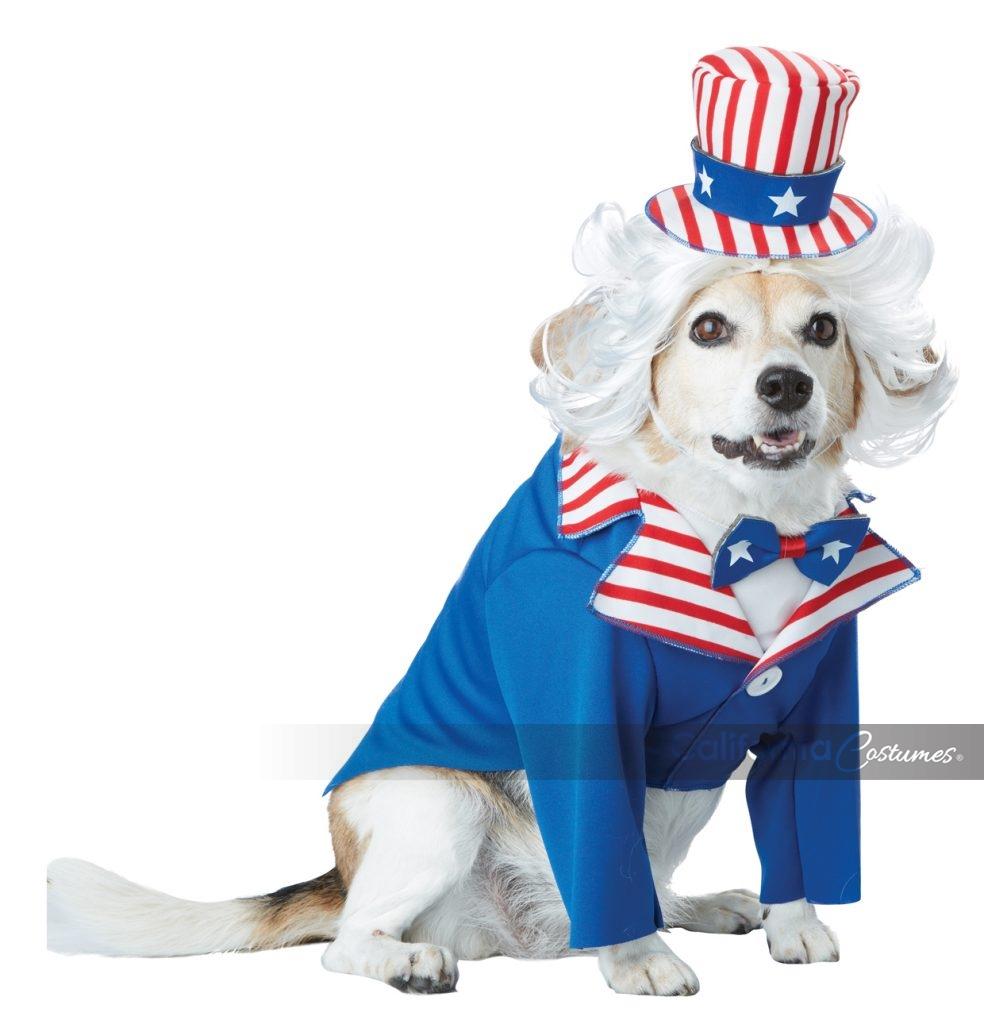 Uncle Sam Dog Costume California Costumes