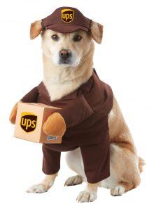 PET20151_UPSPal