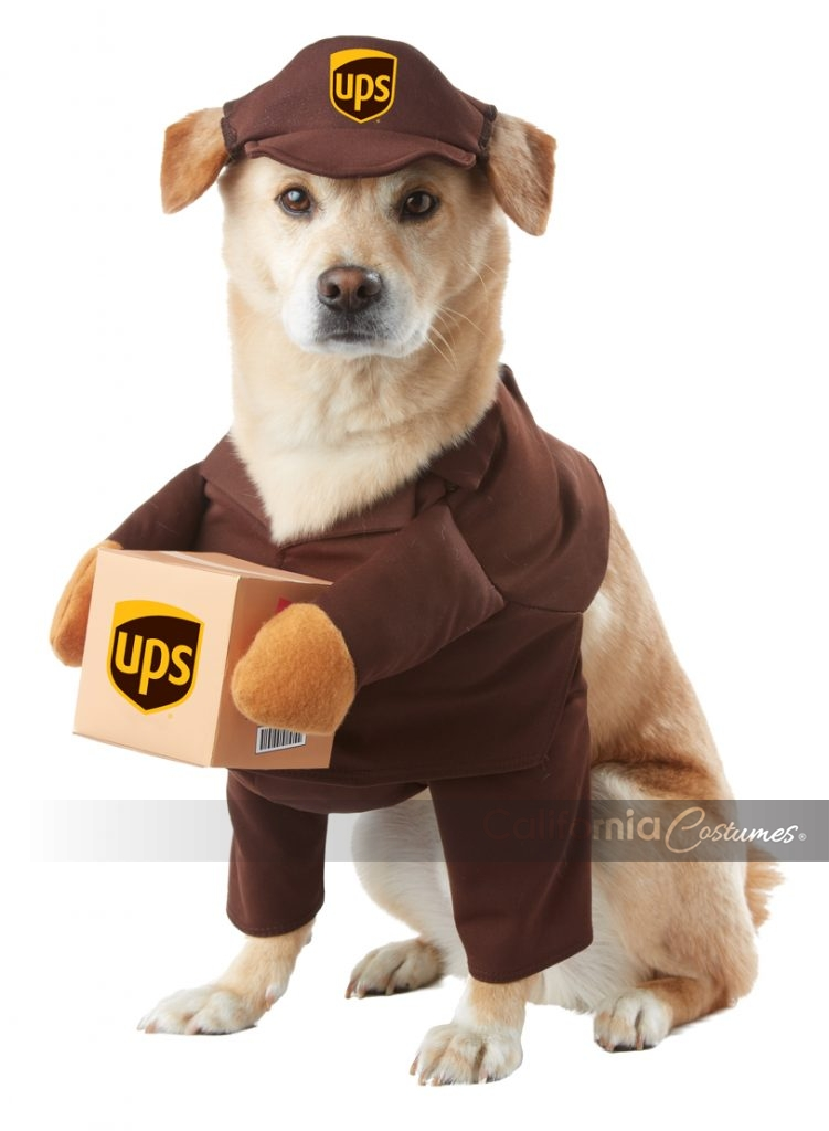 UPS PAL DOG COSTUME  sc 1 st  California Costumes : dog marilyn monroe costume  - Germanpascual.Com
