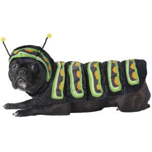 PET20158_Caterpillar